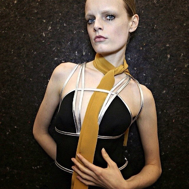 model-vice-virtue-hanne-gaby-odiele.jpg